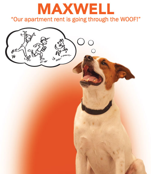 Our apartment rent is going through the WOOF!
