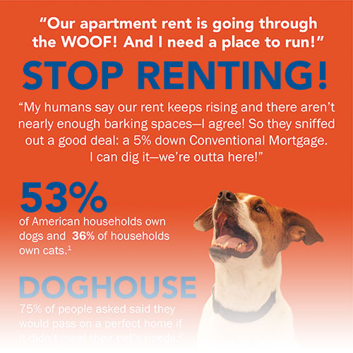 cyr-dog-renting-infographic-thumb